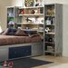 Universal Youth Wall Storage Unit