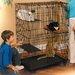 Cat Cage/Playpen