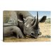 <strong>iCanvasArt</strong> 'Black Rhino' by Harro Maass Graphic Art on Canvas