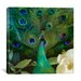 "<strong>""Aqua Peacock"" Canvas Wall Art by Color Bakery</strong> by iCanvasArt"