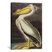 <strong>iCanvasArt</strong> 'American White Pelican' by John James Audubon Painting Print on Canvas