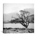 "<strong>iCanvasArt</strong> ""Connemara Tree I"" Canvas Wall Art by Geoffrey Ansel Agrons"