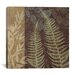 "<strong>iCanvasArt</strong> ""Ferns I"" Canvas Wall Art by Erin Clark"
