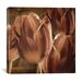 "<strong>""Copper Tulips"" Canvas Wall Art by Mindy Sommers</strong> by iCanvasArt"