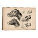 <strong>iCanvasArt</strong> Animal Art 'Dog Anatomy Head' by Wilhelm Ellenberger and Hermann Baum Painting Print  on Canvas