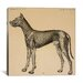 "<strong>iCanvasArt</strong> ""Dog's Anatomy: Anatomy of Lymph Vessels in Dog"" Canvas Wall Art by Hermann Baum"