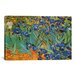 <strong>iCanvasArt</strong> 'Irises' by Vincent Van Gogh Painting Print on Canvas