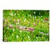<strong>'Meadow of Color' by Dan Ballard Photographic Print on Canvas</strong> by iCanvasArt