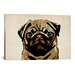 iCanvasArt 'Pug Dog' by Michael Tompsett Graphic Art on Canvas