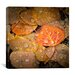 "<strong>""Fall Rains #2"" Canvas Wall Art by Dan Ballard</strong> by iCanvasArt"