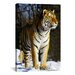 iCanvasArt Photography Tiger Graphic Art on Canvas