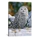 "<strong>iCanvasArt</strong> ""Snowy Owl"" Canvas Wall Art by William Vanderdasson"