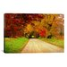 <strong>'Sparks Lane, TN' by J.D. McFarlan Photographic Print on Canvas</strong> by iCanvasArt
