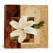 "<strong>iCanvasArt</strong> ""White Flower"" Canvas Wall Art by Pablo Esteban"