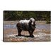 <strong>'White Rhino' by Pip McGarry Photographic Print on Canvas</strong> by iCanvasArt