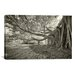 <strong>'Terraphilia' by Geoffrey Ansel Agrons Photographic Print on Canvas</strong> by iCanvasArt