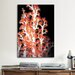<strong>iCanvasArt</strong> Marine and Ocean Red Gorgonian Coral #2 Photographic Print on Canvas