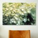 iCanvasArt Marine and Ocean Goniopora Coral Photographic Print on Canvas