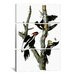 <strong>John James Audubon Ivory-billed Woodpecker1829 3 Piece on Canvas Set</strong> by iCanvasArt