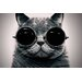 <strong>'Cyber Cat' by Johnny Alex Photographic Print on Canvas</strong> by Epic Art
