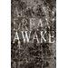 "Maxwell Dickson ""Dream Awake"" Textual Art on Canvas"