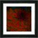 "<strong>Studio Works Modern</strong> ""Dahlia"" by Zhee Singer Framed Giclee Print Fine Art in Red"