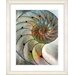 "<strong>Studio Works Modern</strong> ""Sea Cambrian"" by Zhee Singer Framed Fine Art Giclee Print"