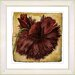 <strong>Vintage Botanical No. 51A by Zhee Singer Framed Giclee Print Fine W...</strong> by Studio Works Modern