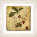 <strong>Vintage Botanical No. 06A  by Zhee Singer Framed Giclee Print Fine ...</strong> by Studio Works Modern