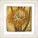 <strong>Vintage Botanical No. 15A by Zhee Singer Framed Giclee Print Fine W...</strong> by Studio Works Modern