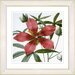 Studio Works Modern Vintage Botanical No. 22W by Zhee Singer Framed Giclee Print Fine Wall Art