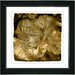 "<strong>Studio Works Modern</strong> ""Sepia Carnation"" by Zhee Singer Framed Graphic Art"