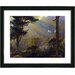 """Forest Sunbeams"" Framed Fine Art Giclee Print"