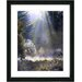"<strong>""Morning Light"" by Mia Singer Framed Graphic Art</strong> by Studio Works Modern"