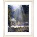 """Morning Light"" Framed Fine Art Giclee Print"