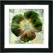 "<strong>Studio Works Modern</strong> ""Floral Flair"" by Zhee Singer Framed Graphic Art"