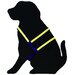 Co-Leash Night Lite Dog Harness