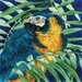 "8"" x 8"" Parrot Art Tile in Blue and Yellow"
