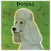 Poodle Occasions Coasters Set