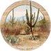 Saguaros Coaster