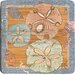 Sealife Sand Dollar Bamboo Coaster