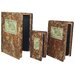 3 Piece Old Fashioned Book Decor