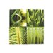 <strong>Graham and Brown Leaf Quad 4 Piece Photographic Print on Canvas Set</strong> by Graham & Brown