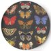 "<strong>Metamorphosis 14.5"" Round Platter</strong> by Thomas Paul"