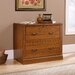 <strong>Camden County 2-Drawer Lateral File</strong> by Sauder