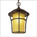 "Outdoor One 17"" x 12"" Light Hanging Lantern in Weathered Bronze"