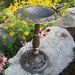 Oakland Living Rose Bird Bath