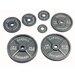 USA Sports by Troy Barbell 5 lbs Olympic Plate in Gray
