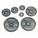 25 lbs Olympic Plate in Gray
