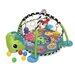 Grow-with-Me Activity Gym and Ball Pit by Infantino